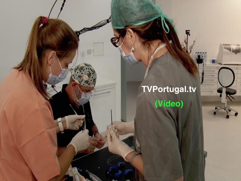 Bonfante Advanced Training, Doutor Fernando Bonfante, Dhebora Bonfante, Paulo Kano, Cascais, Portugal, Televisão, Carcavelos