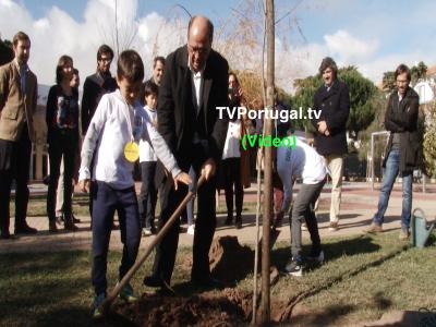 Plantação Simbólica de Árvores na Escola Raul Lino, Carlos Carreiras, Pedro Morais Soares, Frederico Pinho de Almeida, Cascais, Televisão, Portugal
