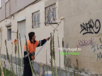 Limpeza e Remoção de Grafittis, Junta deFreguesia Cascais - Estoril, Pedro Morais Soares, Cascais, Televisão, Portugal, junta de Cascais