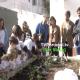 Horto Escolar | Escola EB1 N.º2 de Birre, Pedro Morais Soares, Cascais, Televisão, Portugal, Cobre, Junta de Freguesia Cascais estoril
